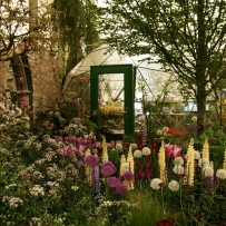 SOLARDOME Haven, RHS Chelsea Flower Show