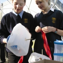 Eco-school projects