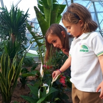 Sensory activities inside Solardome® PRO