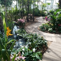 Tropical pathway inside Solardome® PRO