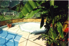 Tropical Spa and plunge pool