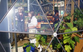 Petchey Academy Eco Project, Hackney Secondary, London