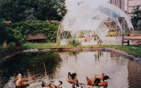 SOLARDOME Retreat, Appletree Court Community Garden