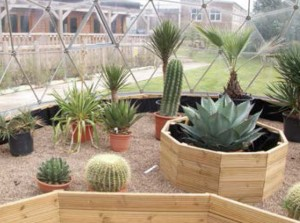Wellacre Academy Ecology Centre Case Study