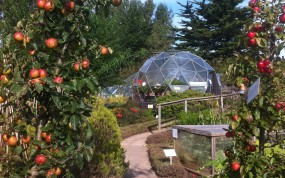 SOLARDOME Haven, Groves Nurseries, Bridport