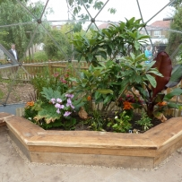 Rain forest dome with tropical planting