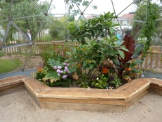 Horticulture, rainforest eco-dome