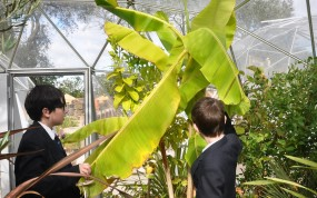 Wellacre Academy pupils in the Eco Centre